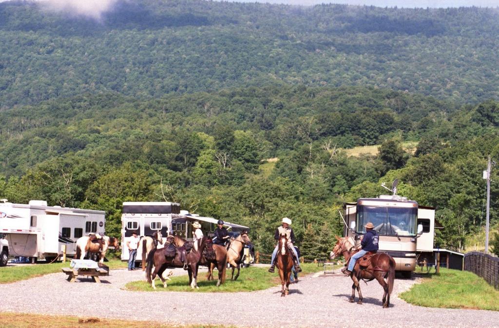 Campsites at Little Shalimar